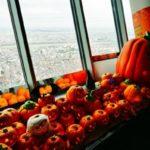六本木ヒルズの展望台「東京シティビュー」で、天空のハロウィン開催!